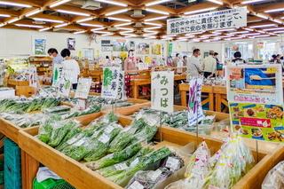 fo_shunnokai2020k.jpg