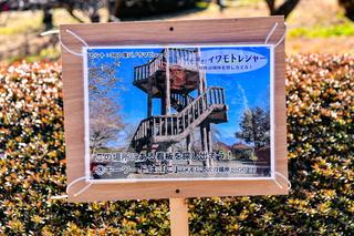 iwamoto_ume202102l.jpg
