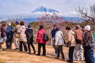 marugoto_iwamotoyama2019c.jpg
