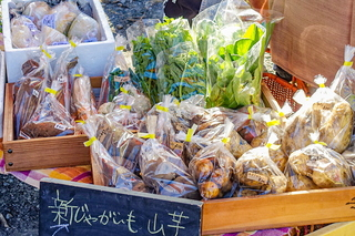 matsuno_marche202012i.jpg