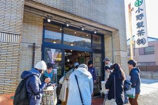rengejiikepark22.jpg