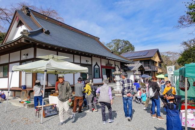satoyamaichiba201911a.jpg