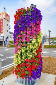 shinfujihiroba05.jpg