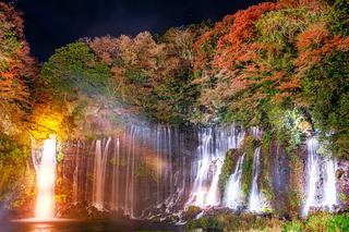 shirairto_lightup2020g.jpg