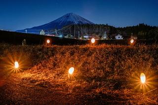 shiraito_taketourou2020p.jpg