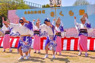 takaokasakurafes2019g.jpg