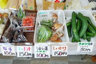 y1noichi202008h.jpg